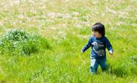 草原で遊ぶ子ども